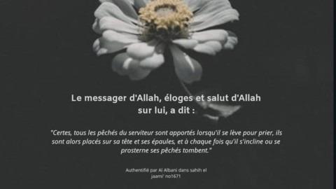 (Hadith)A chaque fois que le serviteur s'incline ou se prosterne, ses péchés tombent.
