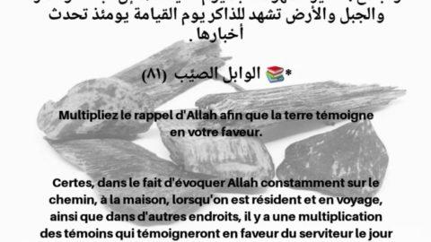 Multipliez le rappel d'Allah afin que la terre témoigne en votre faveur.
