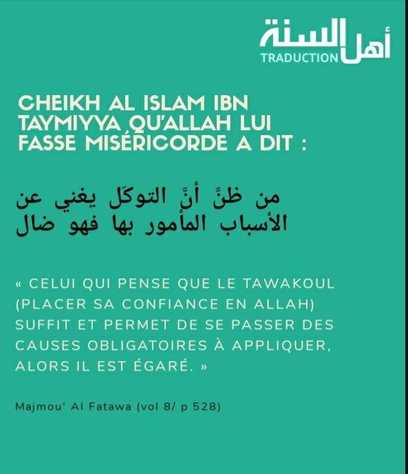 Le jugement de croire qu'on peut placer sa confiance en Allah sans faire les causes.